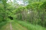 Sumac Trail